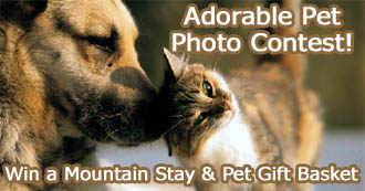 Email your favorite pet photo and receive a chance to win a mountain getaway!